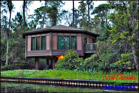 View of a Treehouse Villa at Disney's Saratoga Springs Resort & Spa, Walt Disney World, Orlando, Florida