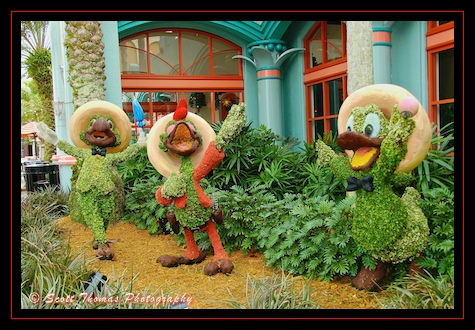The Three Caballeros topiaries fit the American Southwest/Mexico theme of the Coronado Springs Resort perfectly, Walt Disney World, Orlando, Florida