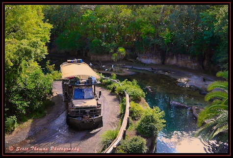 A Kilimanjaro Safari jeep full of guests seen from a rope bridge on the Wild Africa Trek in Disney's Animal Kingdom, Walt Disney World, Orlando, Florida.