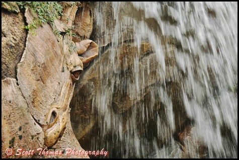 A fast shutter speed freezes the motion of the water of this waterfall in Disney's Animal Kingdom, Walt Disney World, Orlando, Florida