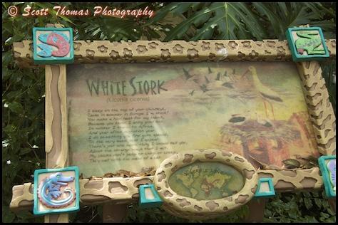 White Stork informational sign in Disney's Animal Kingdom, Walt Disney World, Orlando, Florida