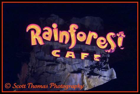 Rainforest Cafe sign in Downtown Disney, Walt Disney World, Orlando, Florida.