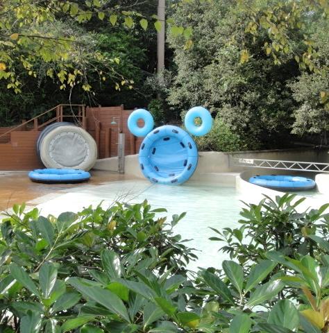 Hidden Mickeys At Disney S Water Parks Allears Net