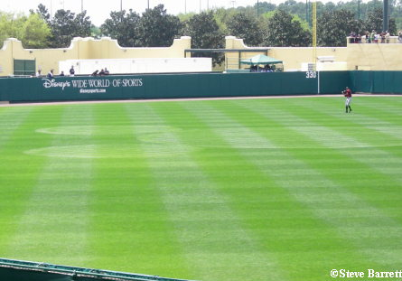 classic Mickey image is planted in the center of the outfield