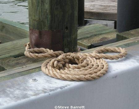 Hidden Mickey Ferry Loading Dock