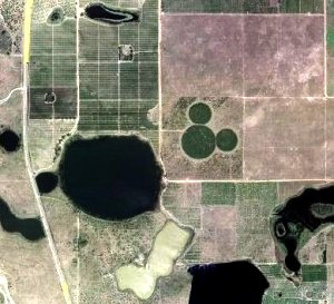 Huge Mickey via Google Earth