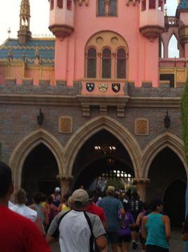 DL_Half_castle_back.jpg