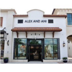 Alex and Ani Disney Springs Town Center