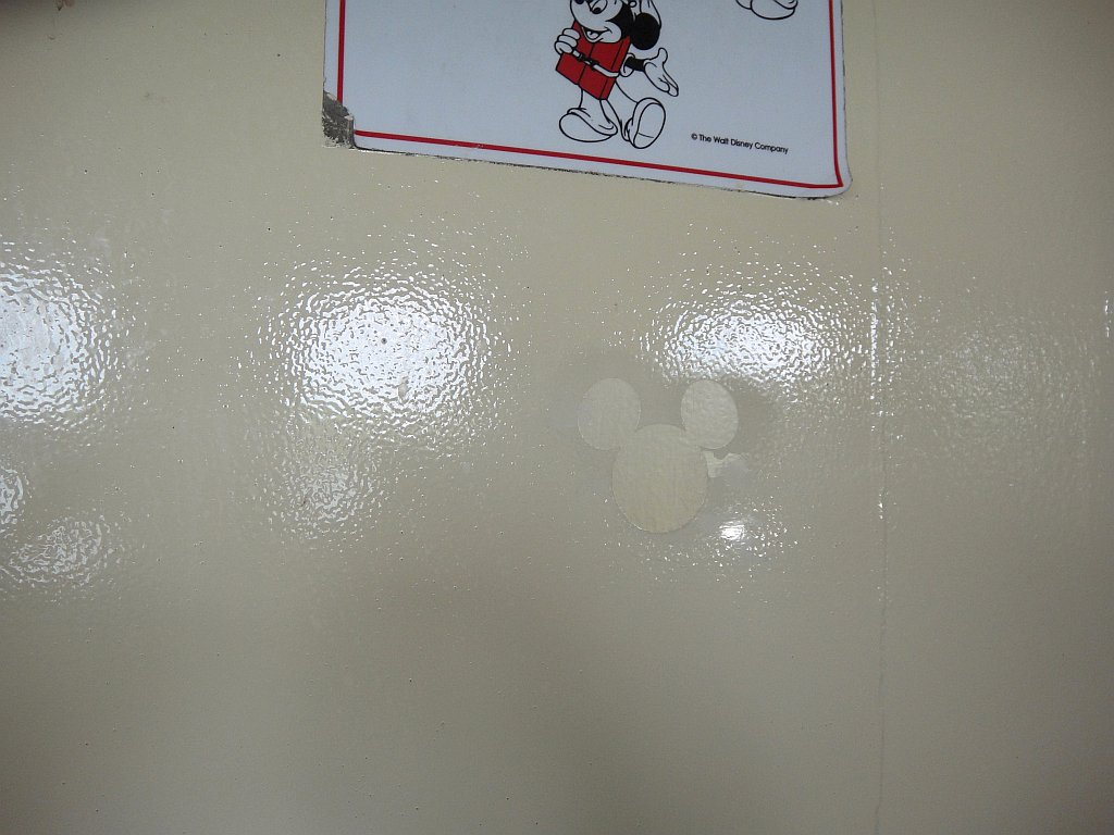 Hidden Mickey