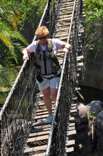 Wild Africa Trek Bridge Crossing