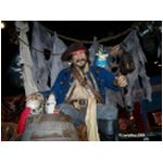 Animated Talking Pirate at World of Disney