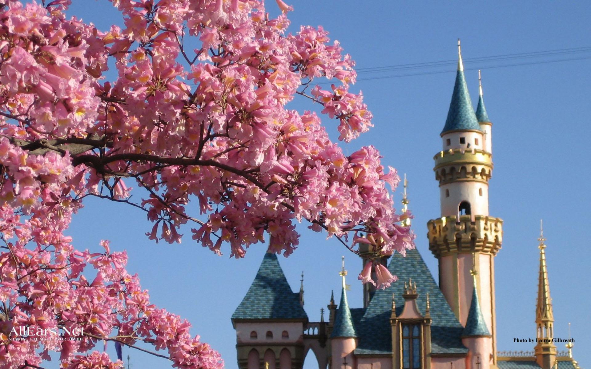 Disney Desktops Allears Net