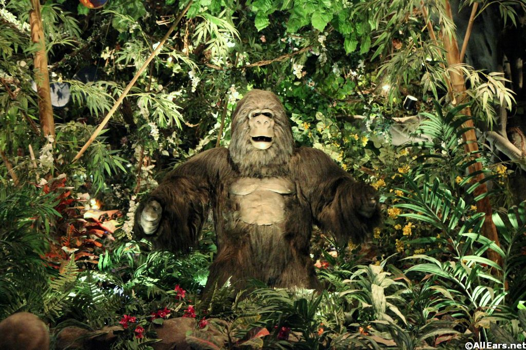 Interior Pictures Of Rainforest Cafe In Disney World
