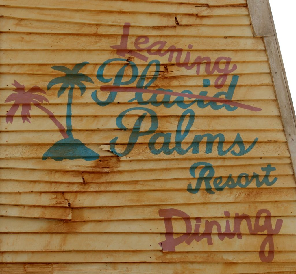 Leaning Palms Signage