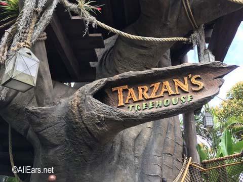 Tarzan's Treehouse  Adventureland  Disneyland Tarzan's Treehouse