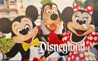 Disneyland 2017 Ticket