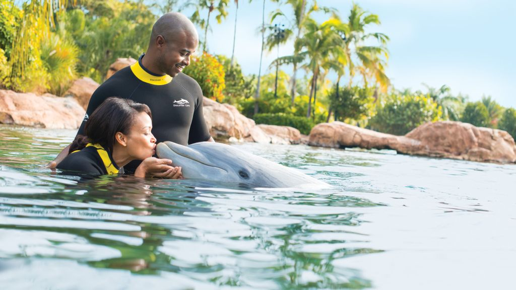 Discovery Cove Special 2018 Savings