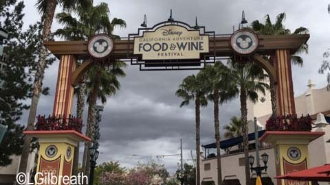 Overview of DCA Food and Wine Festival