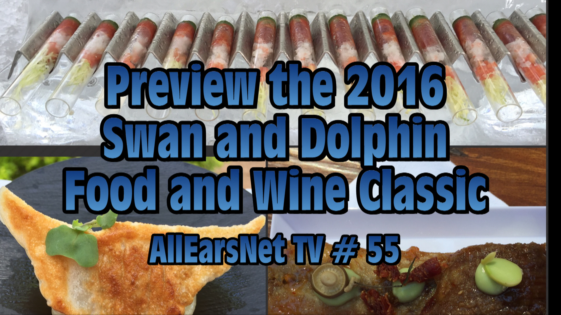 Preview the Walt Disney World Swan and Dolphin Food and Wine Classic - October 28 - 29! AllEarsNet TV