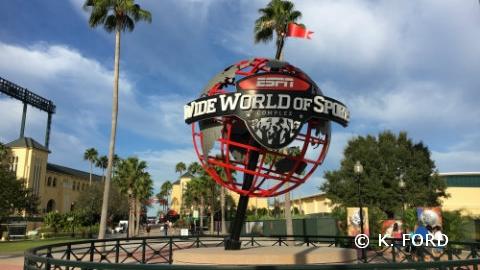The 2018 Walt Disney World Marathon Weekend, Jan. 3-7