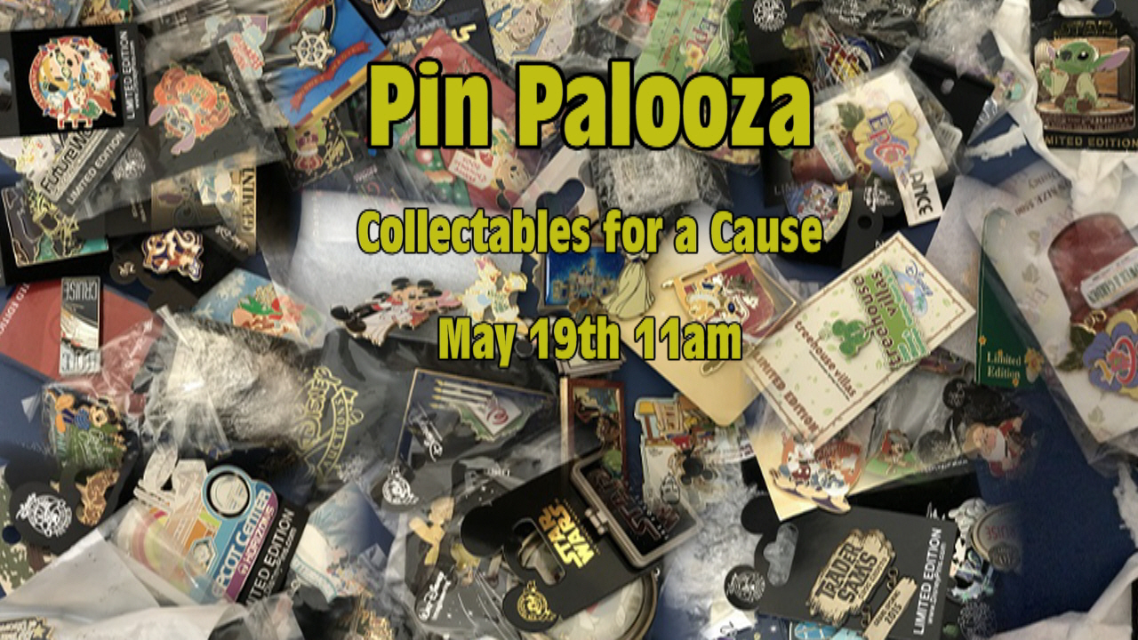 LIVE - ONE Hour Remains : Pin Palooza Collectables for a Cause