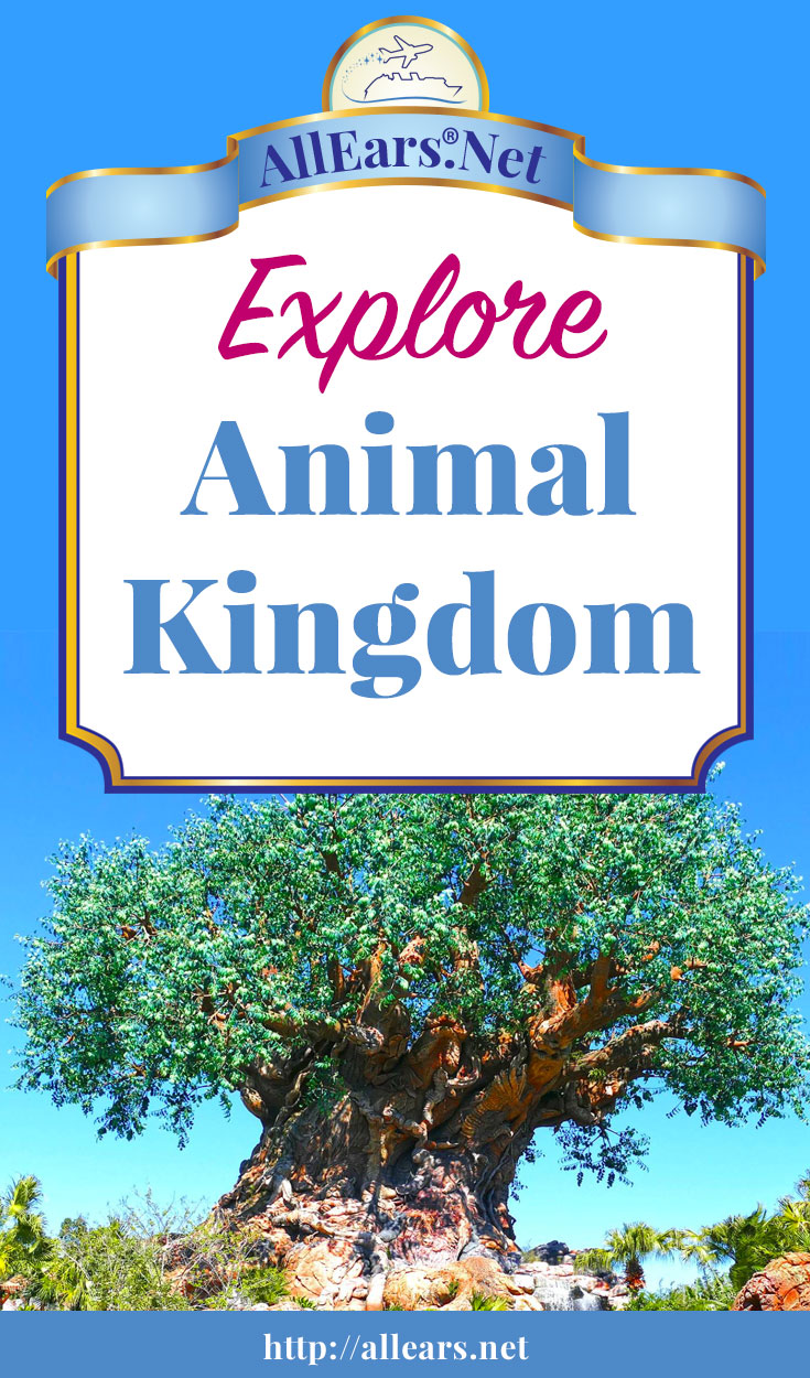 Your Guide to Disney's Animal Kingdom Park at Walt Disney World | AllEars.Net | AllEars.net
