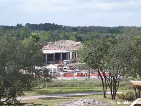 Animal Kingdom Villas Construction