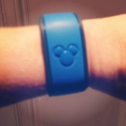 magic-band-closeup1.JPG