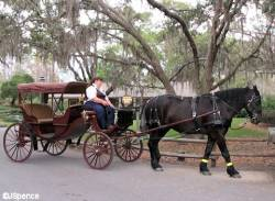 Carriage-Ride-01.jpg