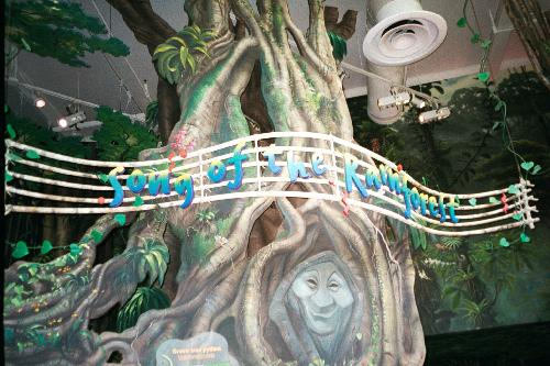 Song of the Rainforest at Disney's Animal Kingdom