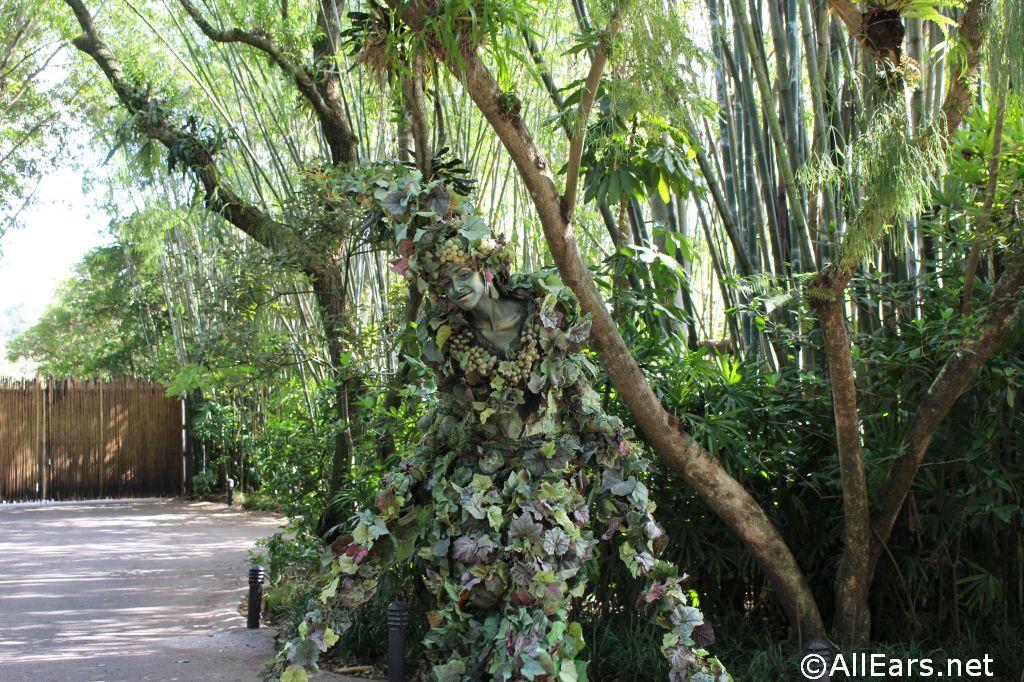 DiVine at Disney's Animal Kingdom