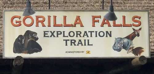 Gorilla Falls Exploration Trail