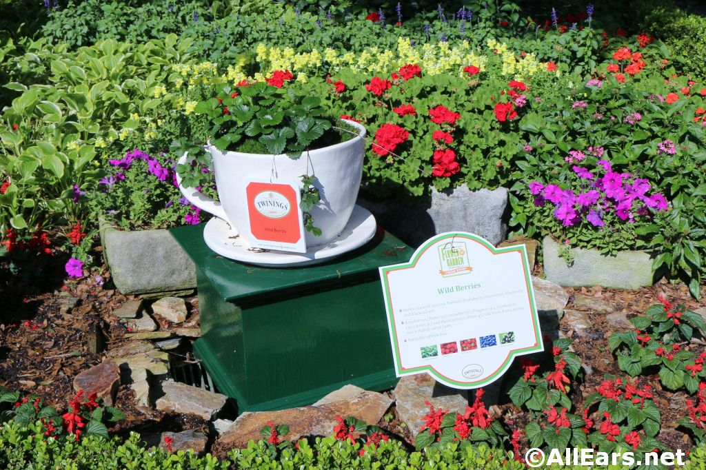 More Details on Epcot's 2016 Flower and Garden Festival