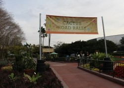 Cactus Road Rally