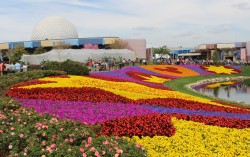 2017 Epcot Flower and Garden Festival Starts March 1!