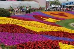 Dates Set for 2017 Epcot Flower and Garden Festival: March 1-May 29