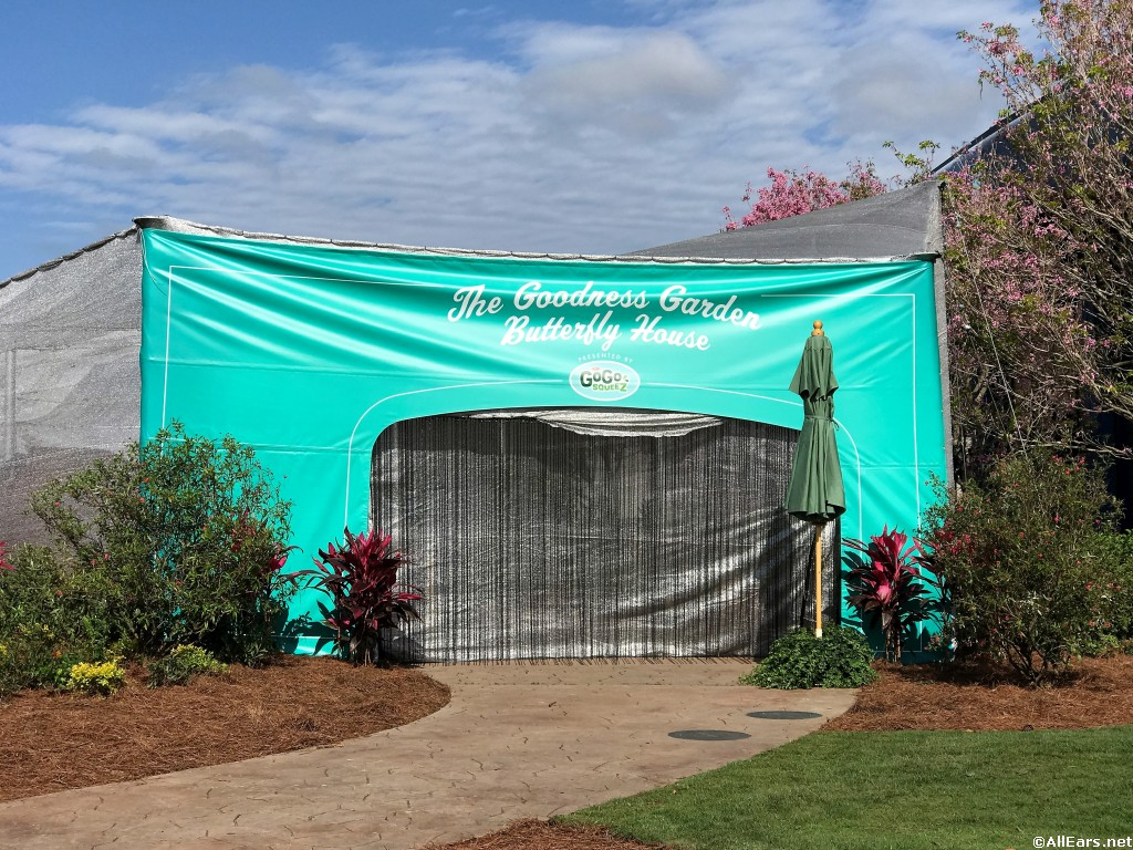 2018 epcot flower and garden festival butterfly house photo gallery