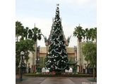 Christmas Tree at Disney's MGM Studios before the Hat