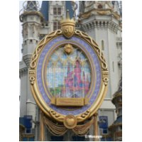 Disneyland Paris Mirror