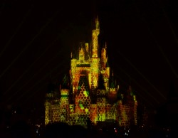 Once Upon a Time at the Magic Kingdom