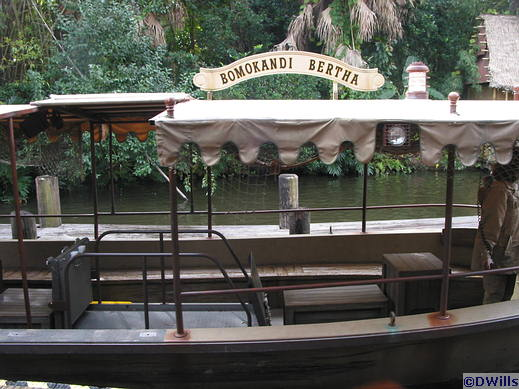 Wheelchair Accessible Jungle Cruise Boat