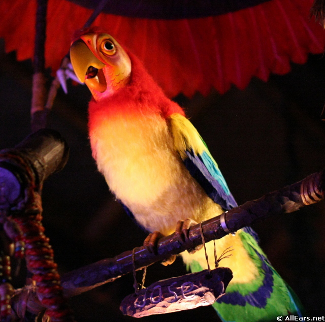 walt disney s enchanted tiki room magic kingdom rh allears net Enchanted Tiki Room GIF Tiki Room Iago